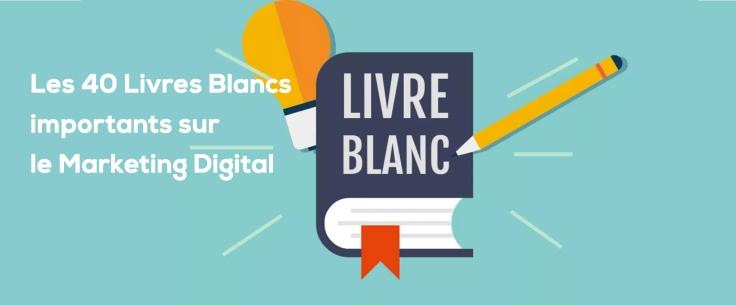 Les 40 Livres Blancs importants sur le Marketing Digital pour développer votre activité..jpg